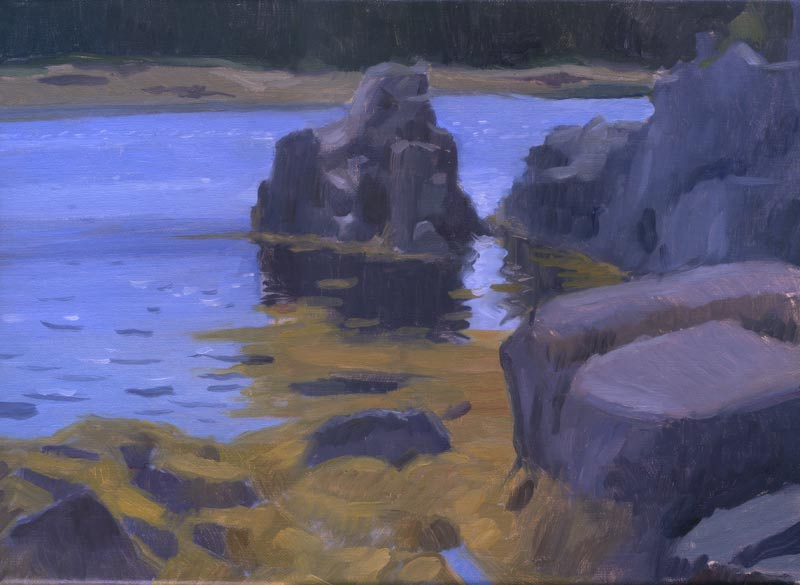 Acadia Rocks, Maine, 9 x 12 in. oil on linen