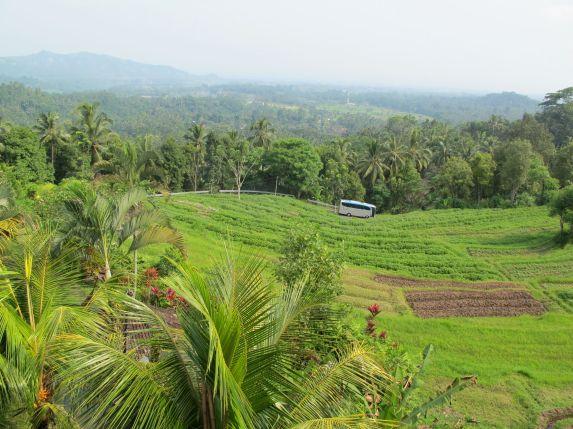 Northern Bali Mountains