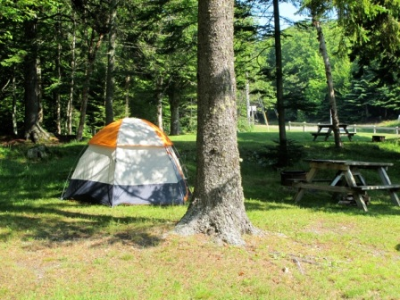 My campsite at Herring Cove.